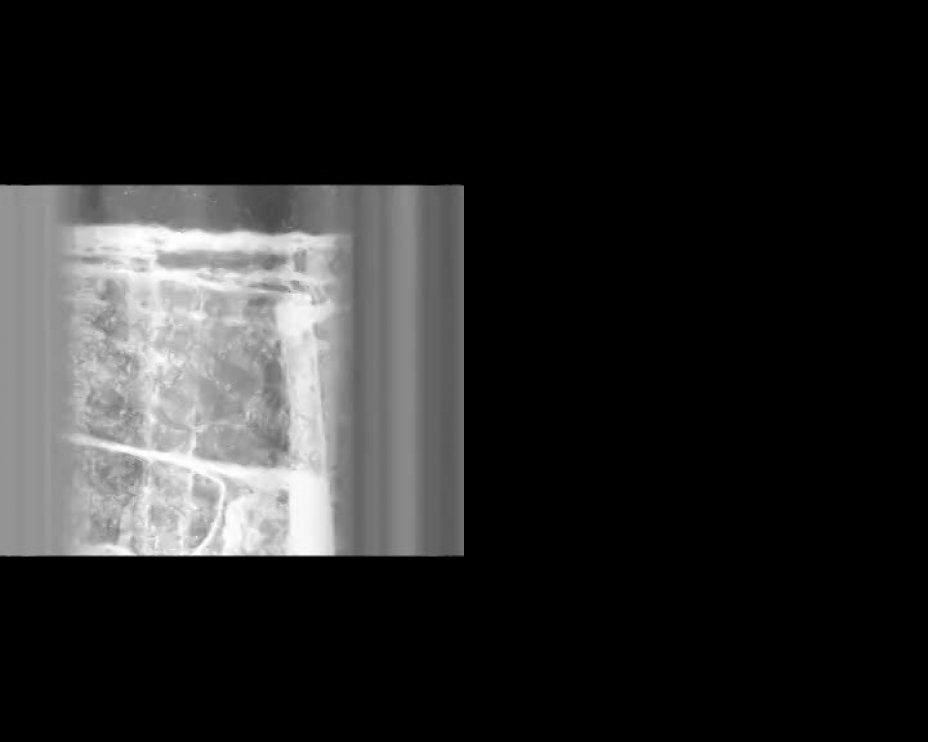Structural Filmwaste. Dissolution 1