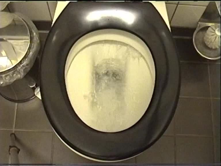toilet piece